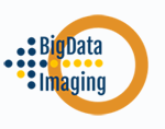 Big data 4 imaging Logo